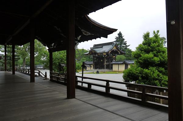 雨の大覚寺