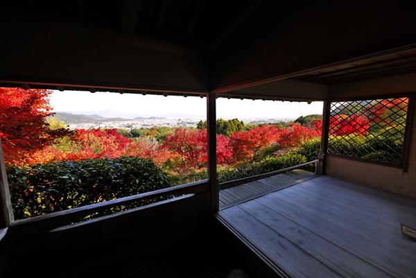 大河内山荘庭園 紅葉