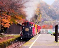 嵯峨野トロッコ列車 嵐山の紅葉