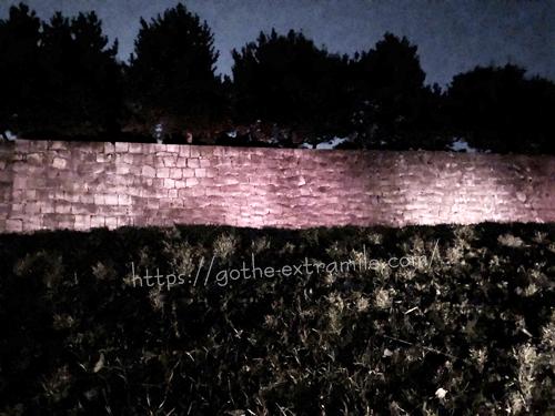二条城桜まつり ライトアップ